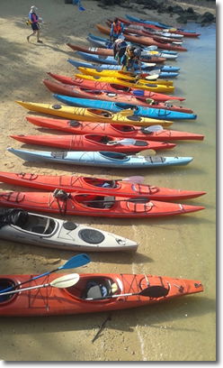 Part of our fleet of kayaks.