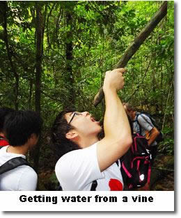 Survival skills training water vines